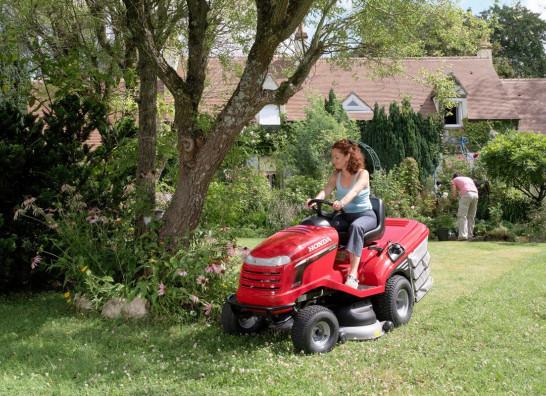 Sprzątamy ogród jesienią